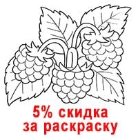 Принесите раскрашенную Вашим ребенком Ежевику и получите скидку 5% на весь чек. Акция действует с 24.02.18 по 1.06.18.