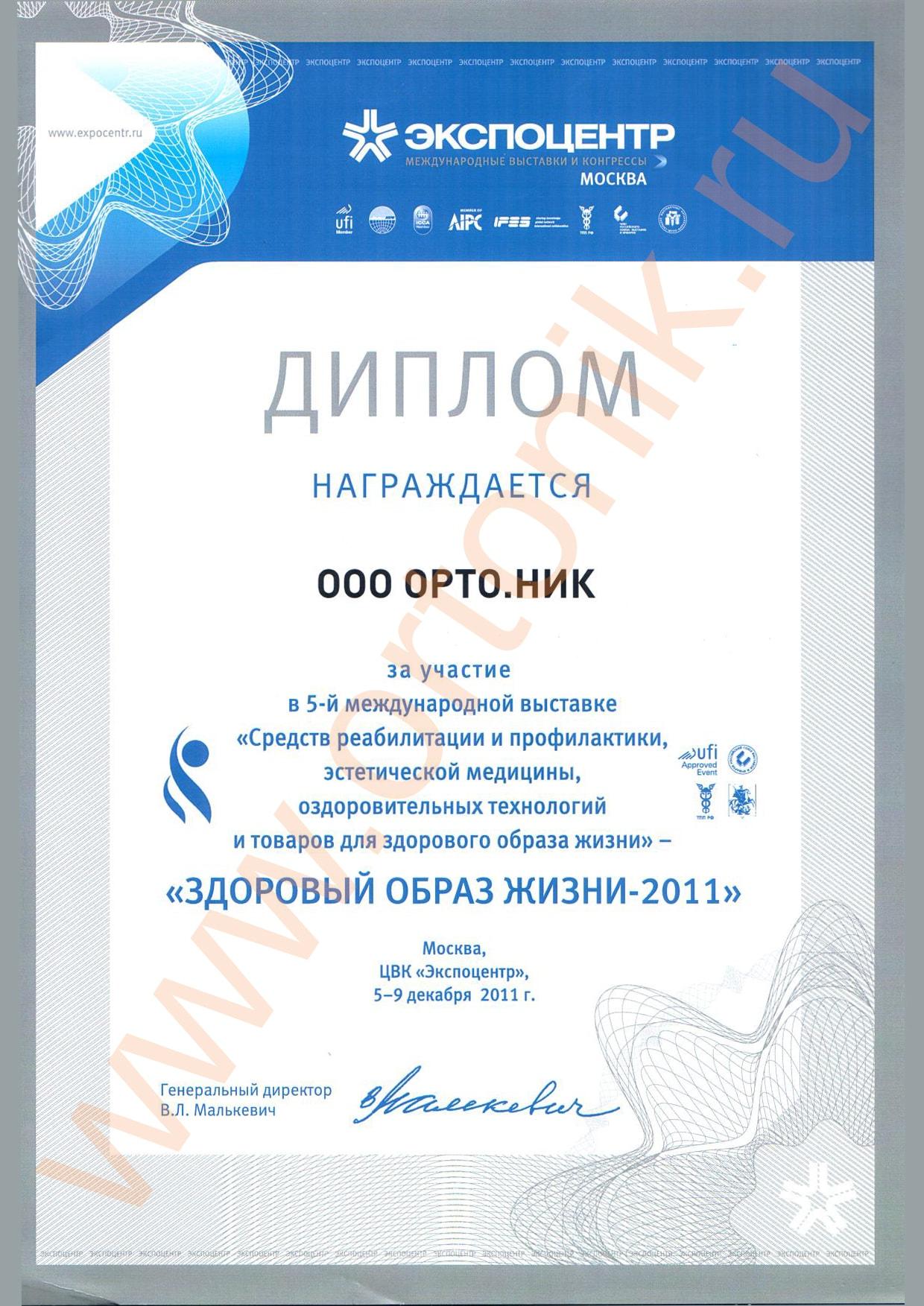 Сертификаты на товары и награды поставщиков Ежевика салон  Диплом Здоровый образ жизни 2011