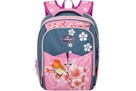 Школьный ортопедический ранец Across для девочки  ACS5-4